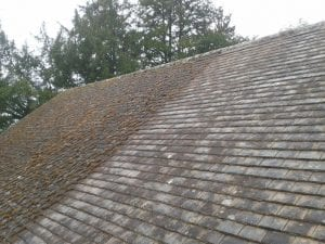 Cost of roof moss removal