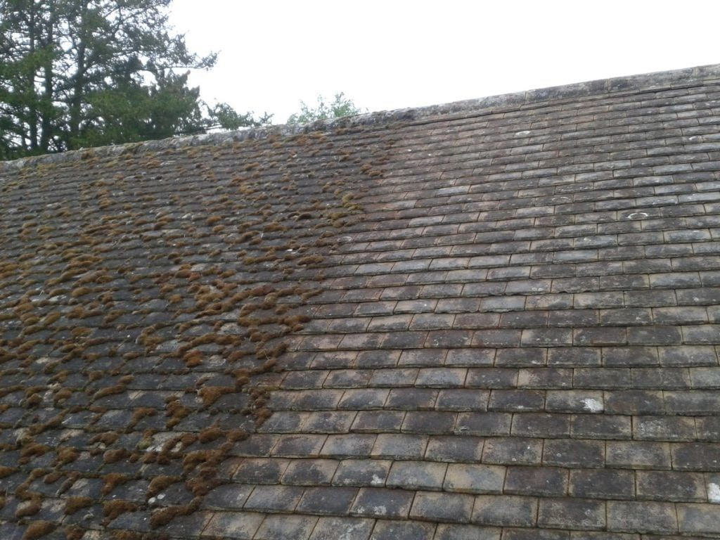 moss covered roof - How To Kill Moss On Roof