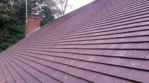 Roof Moss Removal to Clay Tiles