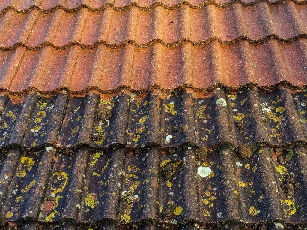 Roof Cleaning Cost Guide Recently Updated For 2018