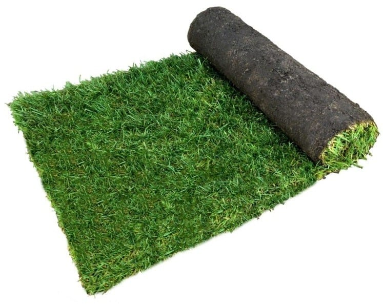 How Much Does Grass Cost At Home Depot