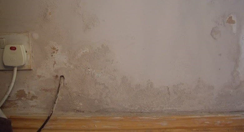 Damp On Wall
