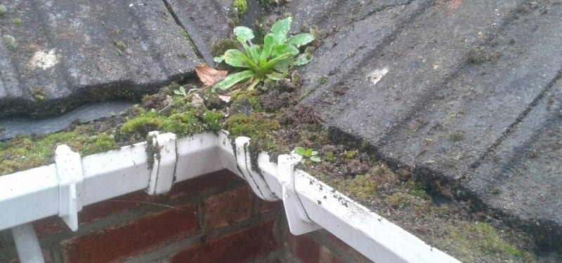 Blocked roof gutters