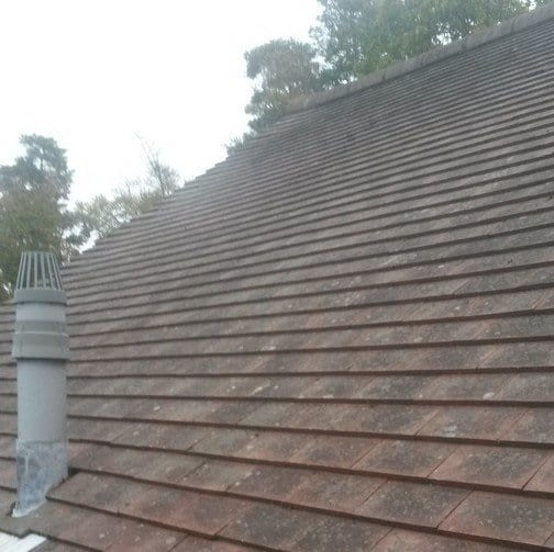 Removed roof moss